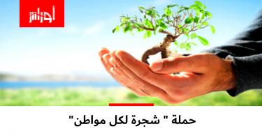 وزارة الفلاحة تعول على هذه الحملة لتعويض ما خسرته الجزائر من مساحات خضراء جراء الحرائق