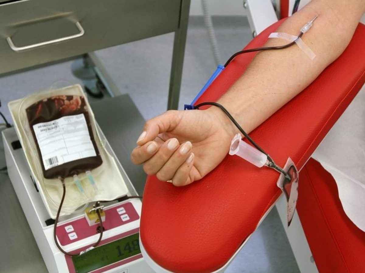 الجزائرييون من أكثر المتبرعين بالدم وهذه هي زمر الدم الناذرة في الجزائر