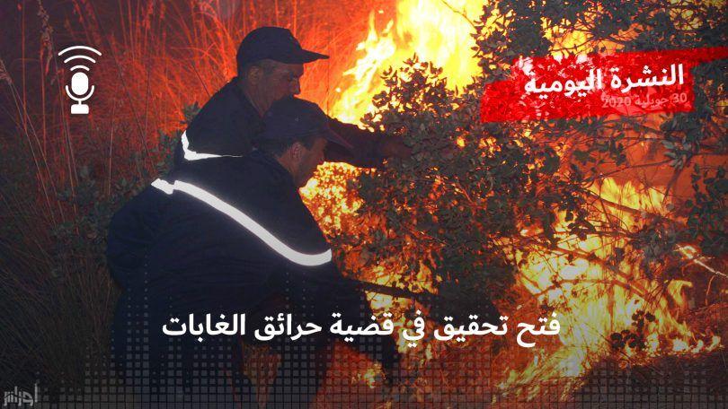 النشرة اليومية: فتح تحقيق في قضية حرائق الغابات
