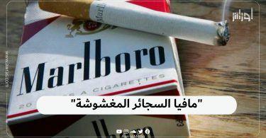 """""""مافيا السجائر المغشوشة """""""