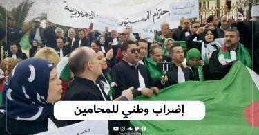 إضراب وطني للمحامين