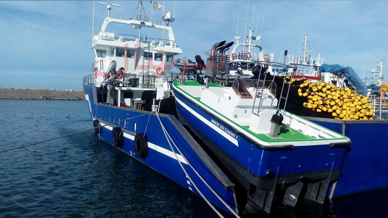 شراكة جزائرية كرواتية لبناء السفن وعصرنة الأسطول البحري