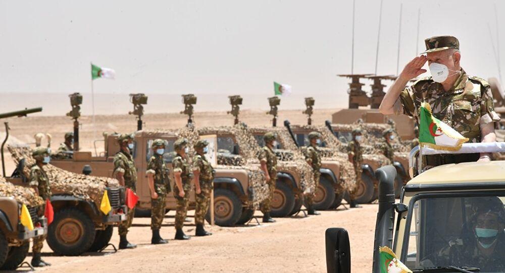 الجزائر تجري مناورة عسكرية رفيعة المستوى مع القوات الخاصة الروسية