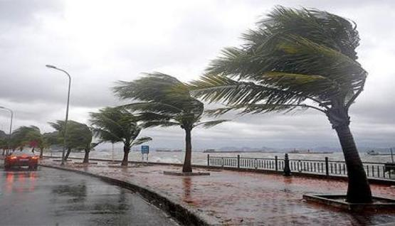 أحوال الطقس: استمرار تساقط الأمطار ورياح قوية على السواحل